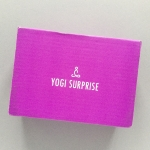 Yogi Surprise Subscription Box Review + Coupon Code – November 2018