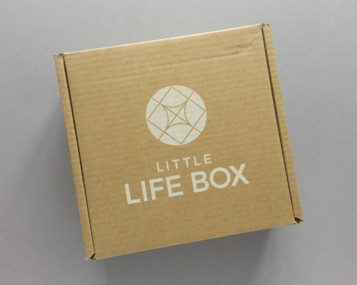 Little Life Box Subscription Box Review + Promo Code – December 2018