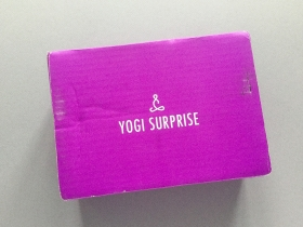 Yogi Surprise Subscription Box Review + Coupon Code – December 2018