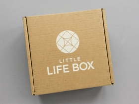 Little Life Box Subscription Box Review + Promo Code – January 2019