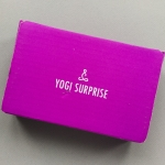 Yogi Surprise Jewelry Subscription Box Review + Coupon Code – January 2019