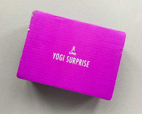 Yogi Surprise Subscription Box Review + Coupon Code – January 2019