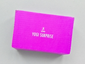 Yogi Surprise Jewelry Subscription Box Review + Coupon Code – February 2019