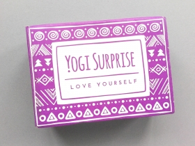 Yogi Surprise Subscription Box Review + Coupon Code – February 2019