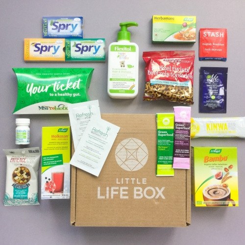 Little Life Box Subscription Box Review + Promo Code – March 2019