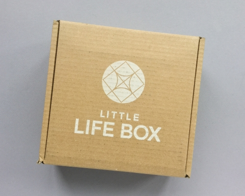 Little Life Box Subscription Box Review + Promo Code – May 2019