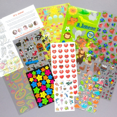 Snail Mail Stickers Subscription Box Review + Coupon Code – June 2019