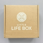 Little Life Box Subscription Box Review + Coupon Code – Summer 2019