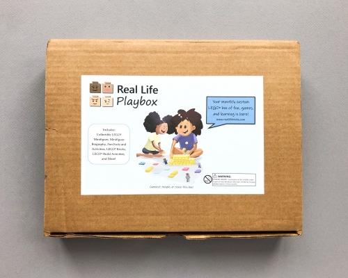 Real Life Bricks Subscription Box Review + Coupon Code – June 2019