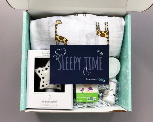 Bitsy Box Subscription Box Review – August 2019