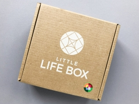Little Life Box Subscription Box Review + Coupon Code – Fall 2019