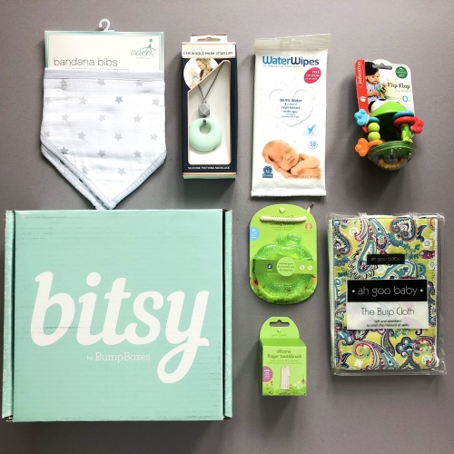 Bitsy Box Subscription Box Review – November 2019