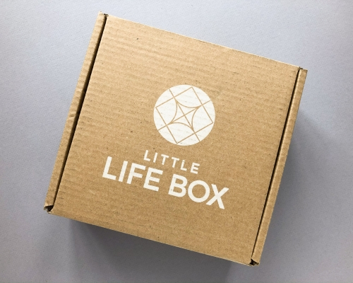 Little Life Box Subscription Box Review + Coupon Code – Winter 2019
