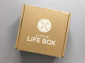 Little Life Box Subscription Box Review + Coupon Code – Spring 2020
