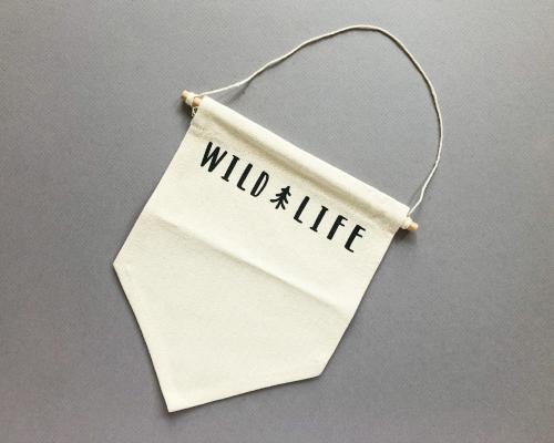 Wild Life Subscription Box Review – April 2020