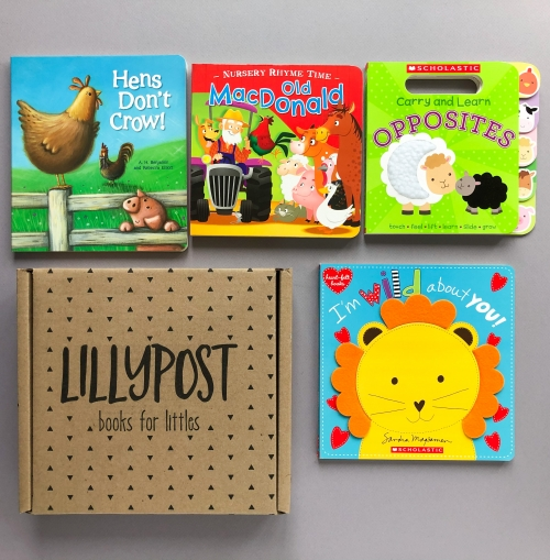 Lillypost Subscription Box Review + $10 Off Discount – April 2020