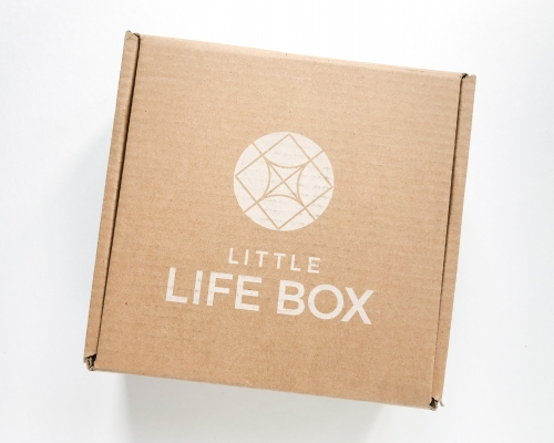 Little Life Box Subscription Box Review + Coupon Code – Summer 2020
