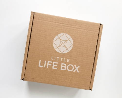 Little Life Box Subscription Box Review + Coupon Code – Fall 2020