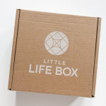 Little Life Box Subscription Box Review + Coupon Code – Summer 2021